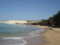 Spiaggia Spiaggia e pineta  - Eraclea minoa (5451 clic)