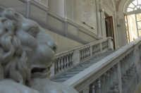 Palazzo di Città - Particolare dello scalone interno CALTAGIRONE GIUSEPPE RANNO