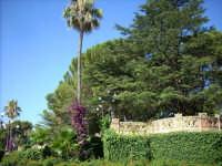 Villa comunale  CALTAGIRONE GIUSEPPE RANNO