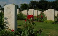 Cimitero anglo americano, onore ai caduti  - Siracusa (1702 clic)
