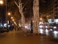 Natale 2003:luci in Via Liobertà (2). PALERMO Paolo Naselli