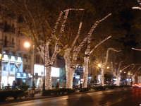 Natale 2003:luci in Via Libertà (3). PALERMO Paolo Naselli