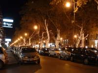 Natale 2003:luci in Via Libertà (5). PALERMO Paolo Naselli