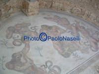 Villa Romana del Casale:i mosaici dell'Aula Triloba.  - Piazza armerina (2067 clic)