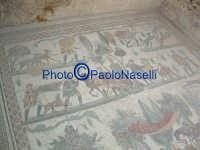 Villa Romana del Casale: mosaico con scene di caccia.  - Piazza armerina (1974 clic)
