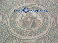 Villa Romana del Casale: mosaico, particolare.  - Piazza armerina (2003 clic)