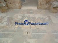 Villa Romana del Casale: Salone del Circolo.  - Piazza armerina (2138 clic)