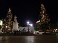 Natale 2003:abeti illuminati al Politeama PALERMO Paolo Naselli