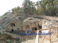 Area archeologica di Contrada Canalotto,il costone roccioso con la staccionata di protezione.  - Calascibetta (1981 clic)