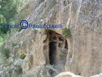 Area archeologica di Contrada Canalotto,particolare di un ambiente scavato nel costone roccioso; da notare le edicolette nel muro interno.  - Calascibetta (1882 clic)