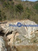 Area archeologica di Contrada Canalotto,il costone roccioso visto da ovest e il bosco soprastante.  - Calascibetta (1942 clic)