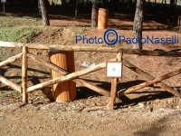 Oasi Fluviale Valle del Morello:staccionata in legno e cartello didascalico in fotoceramica sulla flora e la fauna.  - Villarosa (8137 clic)