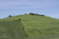 Paesaggio primaverile  - Troina (3901 clic)