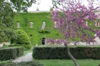 Castello di Nelson, duca di Bronte  - Maniace (6640 clic)
