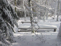 Pineta Rocca Saracena. Tavoli da picnic sotto la neve. Febbraio 2009  - Montagnareale (6816 clic)