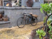 Festa della vendemmia a Piedimonte Etneo 28 Settembre 2008  - Piedimonte etneo (2506 clic)