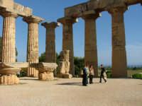 Visita d'istruzione  - Selinunte (4436 clic)