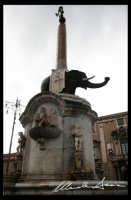Liotro, Catania. La Fontana dell'Elefante è stata realizzata da Vaccarini nell'ambito della ricostruzione della città etnea dopo il terremoto dell'11 gennaio 1693.   - Catania (7937 clic)