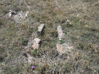 Tombe antiche di Cozzo Morto  - Castellana sicula (5462 clic)