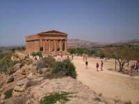 Sito archeologico della Valle dei temli, Tempio della Concordia  - Agrigento (2328 clic)