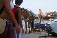 Il mulo di Alicudi ..   - Alicudi (3592 clic)