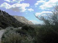 RISERVA ORIENTATA TORRE SALSA  APRILE 2011  - Montallegro (4551 clic)