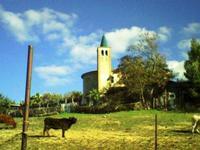 Borgo Cascino   - Enna (4046 clic)