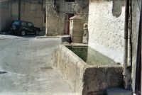 Bevaio Chianu di li Puzzira - inserito nel canto siciliano  A Li novi Cannola di Chiusa  composto da Totò Mirabile.   - Chiusa sclafani (3078 clic)