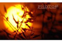 Alba a Monterosso Almo  (3260 clic)