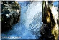 L'ACQUA  - Monterosso almo (4809 clic)