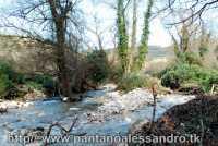 fiume amerillo nel parco canalazzo    - Monterosso almo (5936 clic)