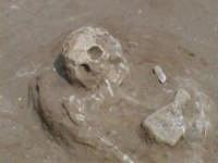 Contrada Pistavecchia Scavi archeologici 2002  - Campofelice di roccella (3369 clic)