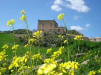 panorama agriolo  - Roccamena (7443 clic)