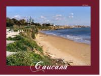 Ad est di Punta Secca c'è la spiaggia di Caucana e dopo quella di Casuzze,per poi arrivare al territorio di Marina di Ragusa.  - Santa croce camerina (6624 clic)