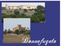 A nord di santa croce c'è il castello di Donnafugata immerso nella campagna e attorniato da ville e masserie.  - Santa croce camerina (4003 clic)