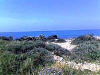 scogliera dei canalotti nel mese di maggio   - Punta braccetto (4080 clic)