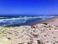 canalotti spiaggia lunga circa 2 km  - Punta braccetto (5070 clic)