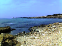 scogliera di ponente,spiaggia con ciotoli, insenature e sullo sfondo il braccio della costa su cui insiste la rocca vigliena  - Punta braccetto (5163 clic)