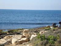 Scogliera dei canalotti una mattina di giugno  - Punta braccetto (4236 clic)