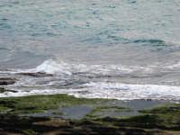 panorama marino  - Punta braccetto (3497 clic)