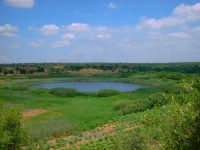 Riserva Naturale Integrale del Lago Preola e Gorghi Tondi. Vista di un Gorgo.  - Mazara del vallo (8971 clic)