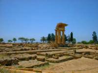 Valle dei Templi. L'Acropoli  - Agrigento (7342 clic)