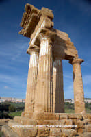 Templi  - Agrigento (5049 clic)