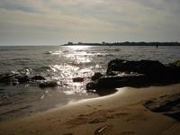 - Punta braccetto (3073 clic)