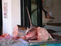 Il Pesce Spada  - Messina (7066 clic)