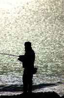 TE FISHERMAN  - Pozzallo (5185 clic)