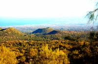 ETNA  - Catania (3940 clic)