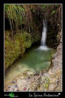 Cascata Piccola cascata naturale nei pressi di Mineo  - Mineo (6731 clic)