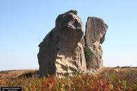 Megaliti Megaliti di Argimusco   - Montalbano elicona (990 clic)