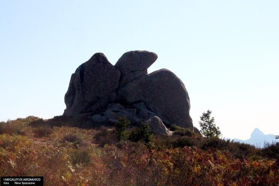 I megaliti di Argimusco - MONTALBANO ELICONA - inserita il 19-Mar-19